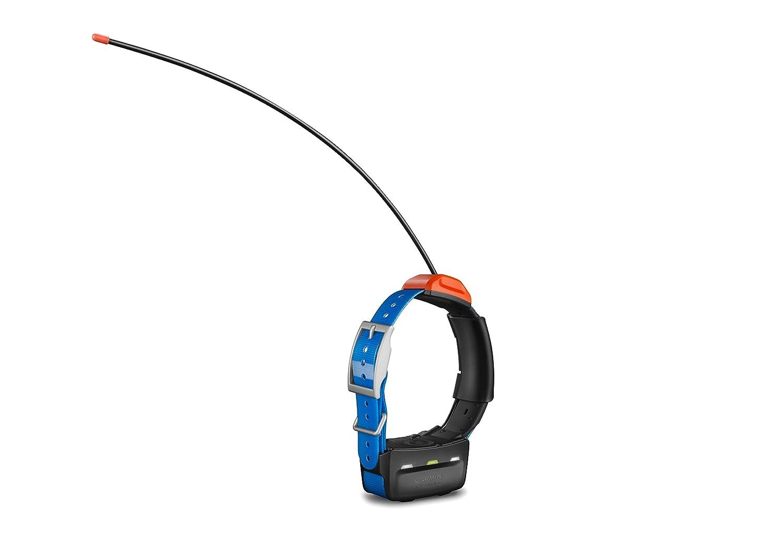 Garmin T5 GPS Dog Collar Image 1