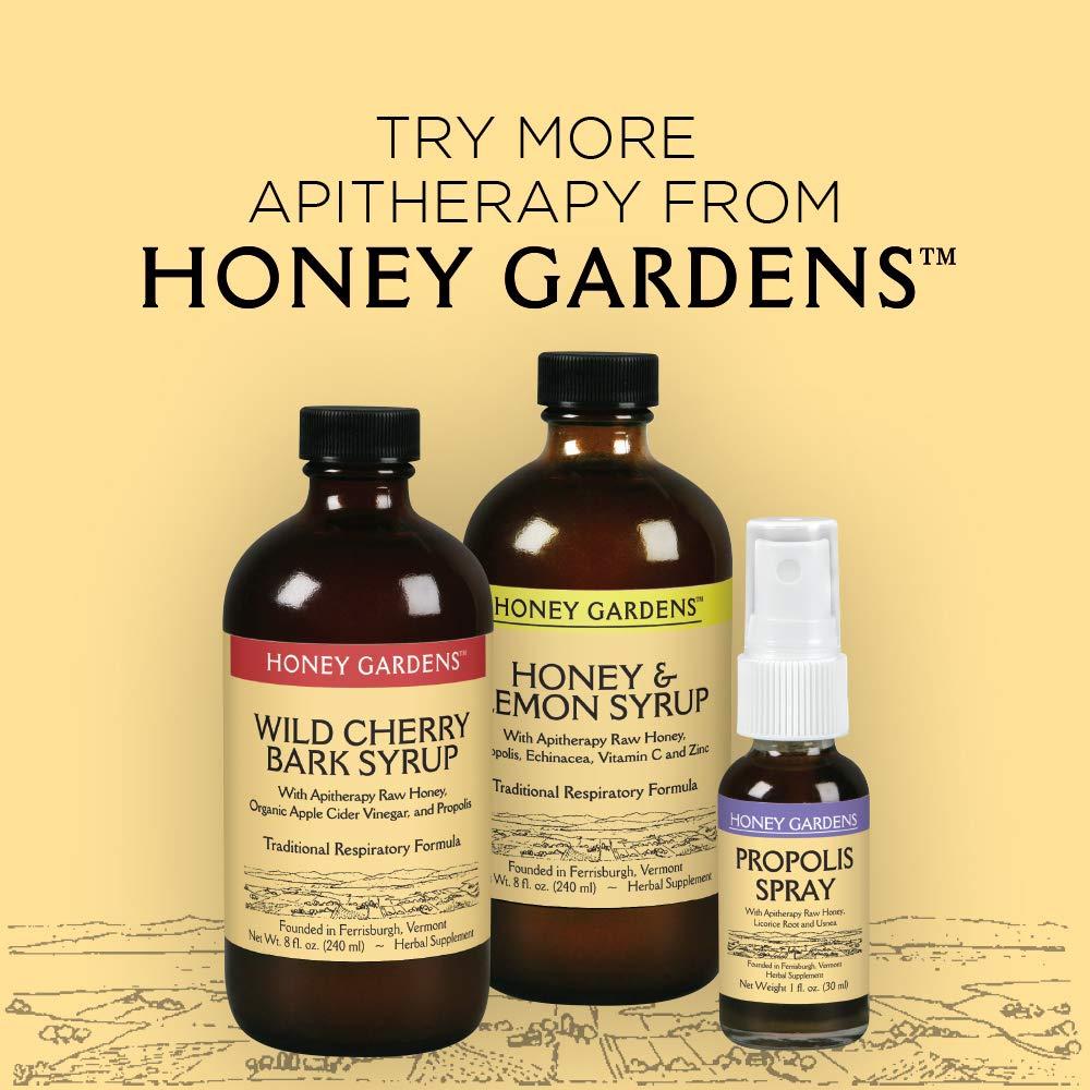 Honey Gardens Elderberry Syrup with Apitherapy Raw Honey, Propolis &  Elderberries | Traditional