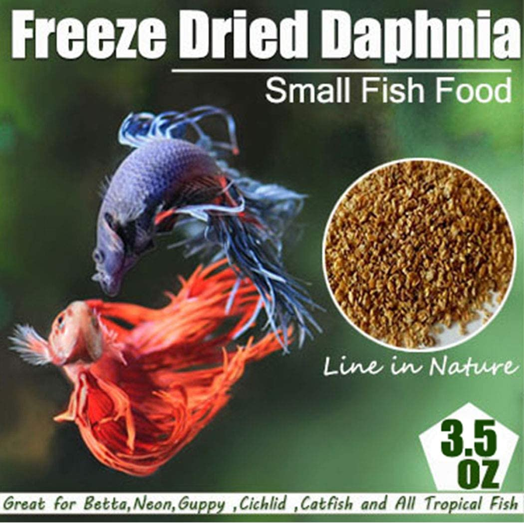 Freeze Dried Daphnia Fish Food for Betta, Neon, Guppy, Cichlid, Catfish and All Tropical Fish