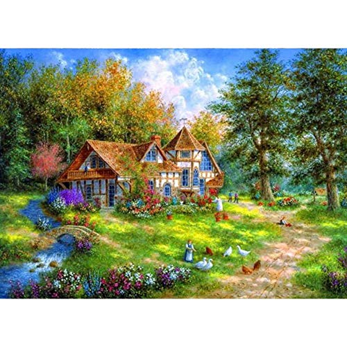 (Diamond Painting 5D DIY Kits for Adults, Kids, Beginners. Home Office Decortaion. Gift Presents for Him Her House 15.7x11.8in 1 Pack by)