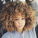 Falamka Afro Big Loose Curly Brown Kanekalon Women's Full Hair Cosplay Wig for Daily Use