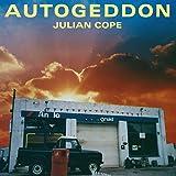 AUTOGEDDON (25TH ANNIVERSARY BOXES)