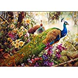 New arrival DIY Oil Painting by Numbers Kit Theme PBN Kit for Adults Girls Kids White Christmas Decor Decorations Gifts - Peacock (D163)