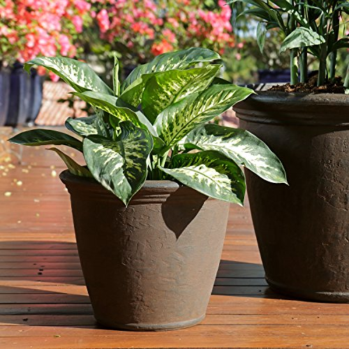 Sunnydaze Anjelica Outdoor/Indoor Flower Pot Planter, Unbreakable Double-Walled Polyresin with Fade-Resistant Rust Finish, Set of 2, 16-inch (Flower Finish)