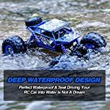 Distianert 1:12 4WD Electric Amphibious RC Car, 2.4GHz 12KM/H High Speed Monster Truck, Off-/On- Road Buggy for All Terrain