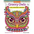 Groovy Owls Coloring Book Coloring Is Fun Design Originals 32 Adorable Art Activities With Quiet Stoic Wise And Happy Owls Plus Beginner Friendly Advice Techniques Color Choices Examples