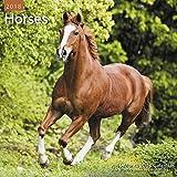 2018 Horses Wall Calendar (Mead)