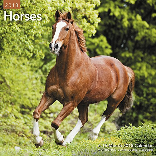 2018 Horses Wall Calendar (Mead) cover