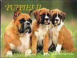 Puppies II, Mitsuaki Iwago, 0893462020