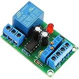 12V Controlador de Carga de Batería Módulo de Protección Automática de Batería Regulador de Carga Automático