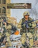 Fallujah: Iraq 2004