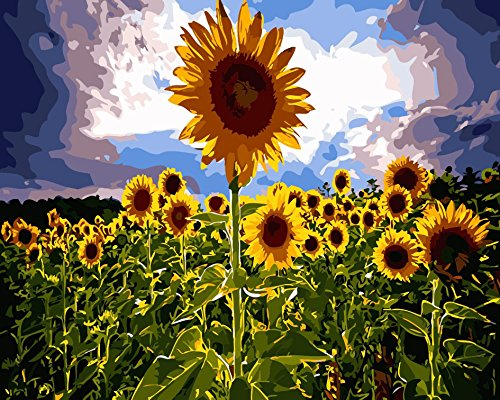 (16x20'' DIY Blooming Sunflower Under The Hot Sun Scenery Paint by Numbers Kits On Canvas Art Acrylic Oil Painting Frameless for Adults and Children)