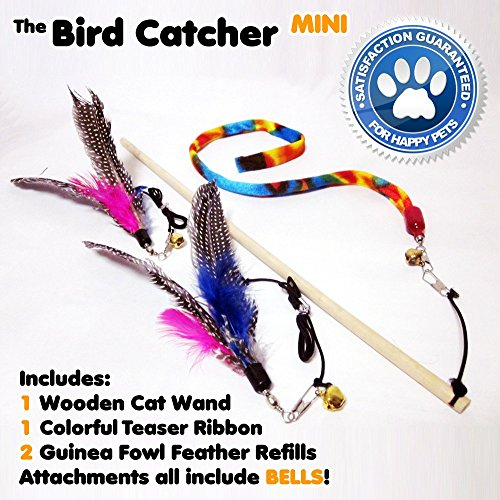 Mini Cat Feather Wand Toy Set with 2 Guinea Fowl (Dangler Dog Cat Collar Charm)