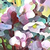 Hellebore Blur, Original Painting, Lenten Rose in Spring, 15 x 15 inches