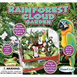 DuneCraft BL-0456 Rainforest Cloud Garden Science Kit