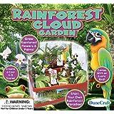 Dunecraft Rainforest Cloud Garden Science Kit