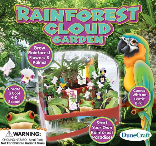 Dunecraft Rainforest Cloud Garden Science Kit