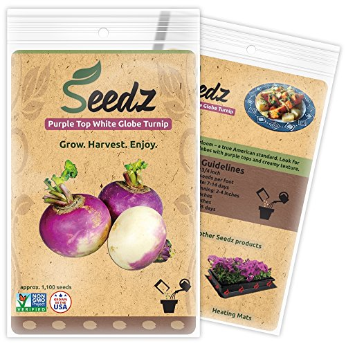 CERTIFIED ORGANIC SEEDS (Apr. 1,100) - Purple Top White Globe Turnip Seeds - Heirloom Seeds - Non GMO, Non Hybrid - USA