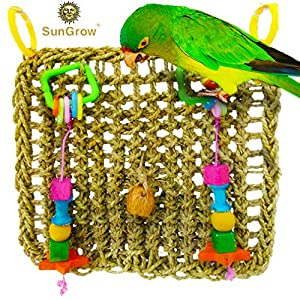Bird Foraging Wall Toy with Hanging Hook - Seagrass Woven Mat Safe to Chew - for Beak Exercise and IQ Simulation of Small & Medium Bird - Tuck Treats in Waffle Ball or pod Cups - Long Lasting 63