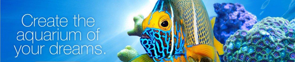 5054e1980 Amazon.com : MarineLand Black Diamond Media Premium Activated Carbon :  Aquarium Filter Accessories : Pet Supplies