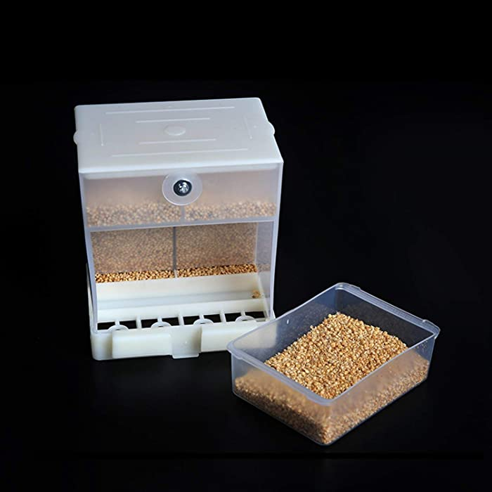 RYPET No-Mess Bird Feeder - Parrot Integrated Automatic Feeder for Small to Medium Birds