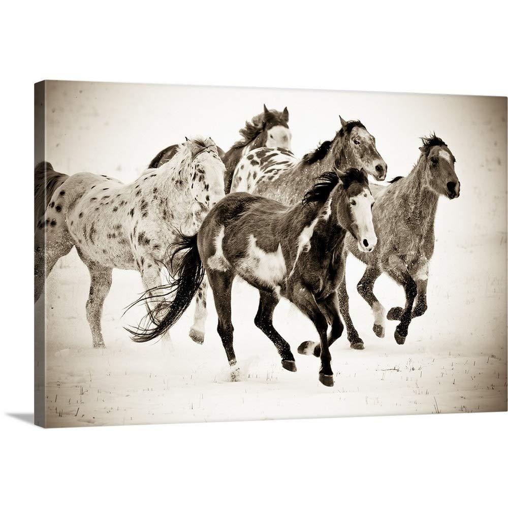 キャロルウォーカープレミアムシックラップキャンバス壁アート印刷題名Painted馬実行 48