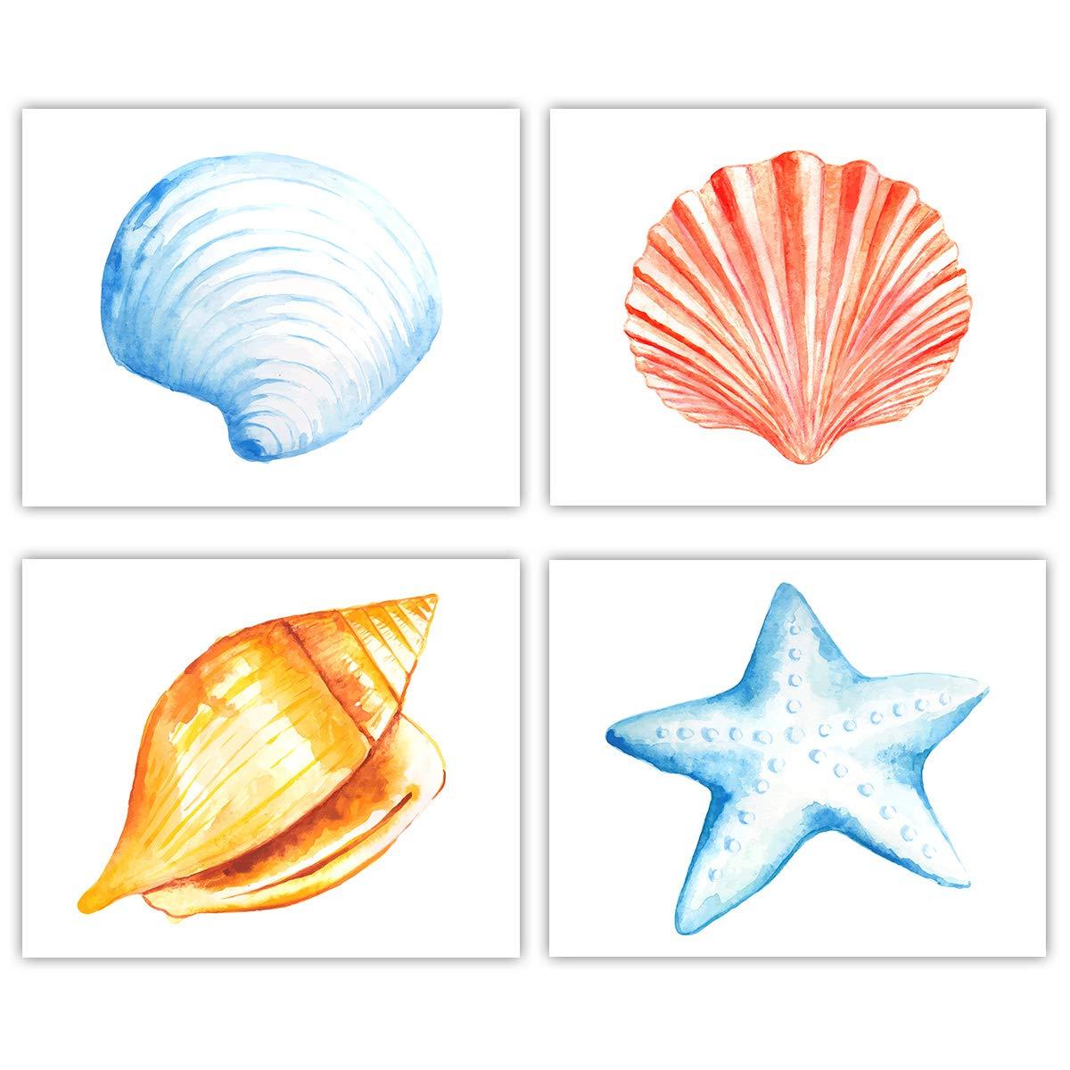 Amazon Com Nautical Beach Shells Wall Art Set Of 4 8 X10