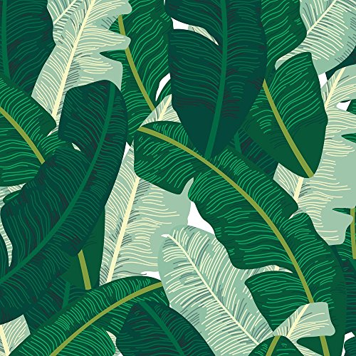 Palm Fabric Classic Banana Leaves In Palm Springs Green by Elliottdesignfactory Printed on Basic Cotton Ultra Fabric by the Yard by Spoonflower (Sale For In Banana Leaves Usa)