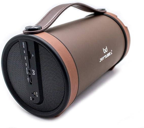 Altavoz JOYTUBE L 30W (Bluetooth, Soporte Memoria SD, AUX/Radio FM) BIWOND