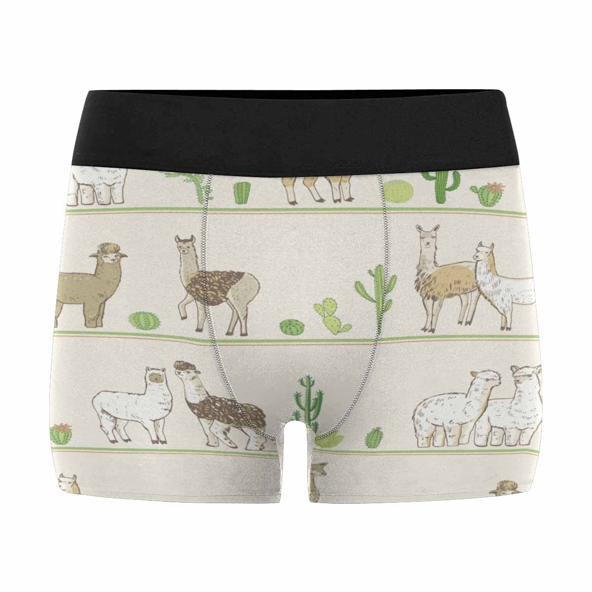 INTERESTPRINT Mens All-Over Print Boxer Briefs Lama and Cactuses XS-3XL