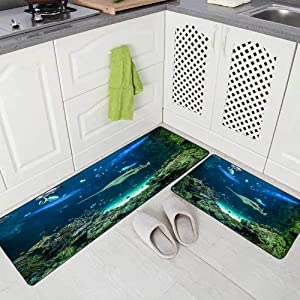 "Capsceoll Modern Kitchen Rug Washable Kitchen Rug for Kitchen,Large Also Known as Shark Other Fishes Swimming in Large Aquarium Carpenter a Kitchen Rugs and Mats Non Skid Washable 17""X48""+17""X24"""