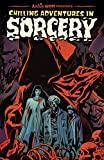 img - for Chilling Adventures in Sorcery (Archie Horror Anthology Series) book / textbook / text book