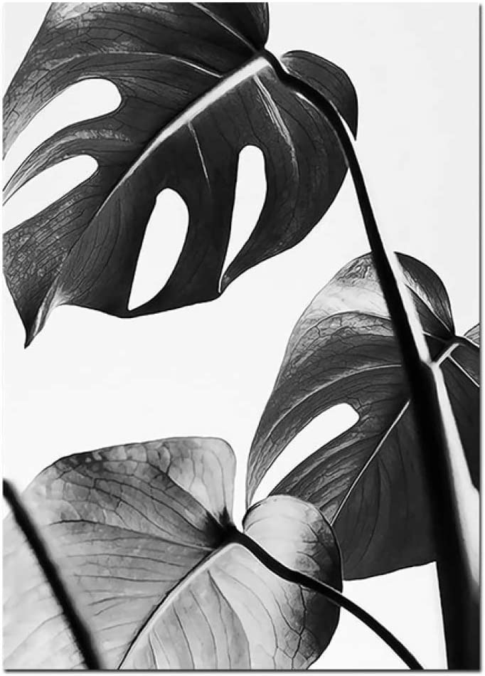LiMengQi Coeur Noir et Blanc feuille de palmier stylo Image affiche mur modulaire Toile peinture accueil nordique décoration Impression Art Salon (No Frame)