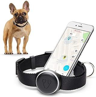 MISHIKO - Collare Localizzatore per Cani con GPS Integrato, Activity Tracker che Diagnostica e Monitora l'Attività Fisica, Ricarica Wireless, Abbonamento Illimitato, Versione 2 Potenziata – Nero