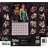WWE Divas Wall Calendar 2013