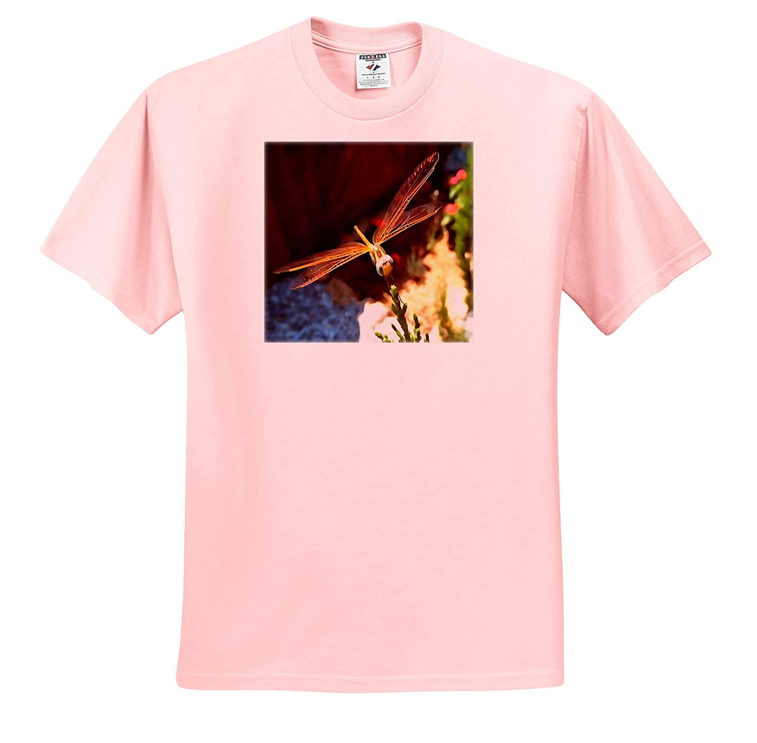 Dragonfly Acrylic Painting 3dRose Taiche T-Shirts Dragonfly with Sunlight Gilded Wings