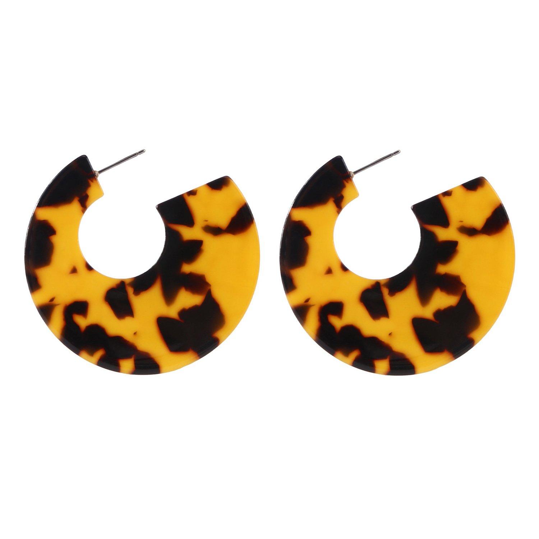Resin Hoop Earrings Acrylic Round Circle Dangle Tortoise Shell Ear Drops Jewelry for Women B0107T