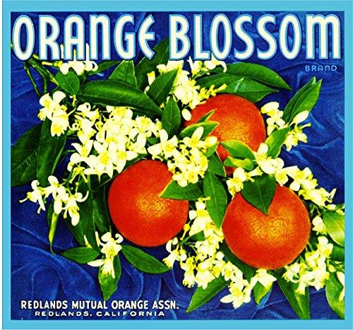 Redlands Orange Blossom Brand Blue Version Orange Citrus Fruit Crate Box Label Art Print