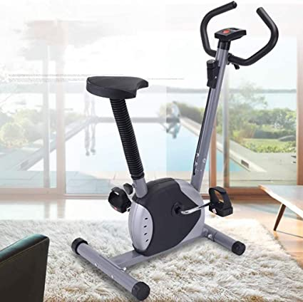 Exercise Bike Indoor Recumbent Stationary Cardio Fitness Bicycle Silver