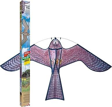 Defenders Hawk Kite