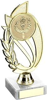 Lapal Dimension Doré/Argenté Mat Support Plastique sur du Marbre Trophy–(Centre de Diamètre) 10en