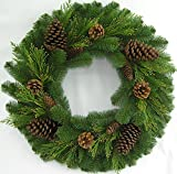 """26"""" Juniper Pine Wreath (30"""" Fully Opened) - Accurately Mimics Texture and Color of Natural, Freshly Cut Pine Needles - Adorned with Select Cones & Cedar Sprigs - Designer Preferred Look"""