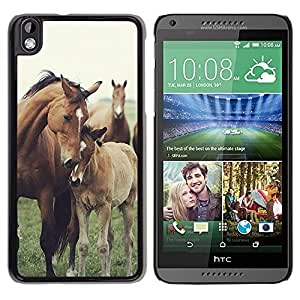 Impact Case Cover with Art Pattern Designs FOR HTC DESIRE 816 Horse Cub Nature Foal Animal Summer Betty shop