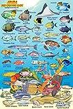 "Aruba Reef Creatures Guide Franko Maps Laminated Fish Card 4"" x 6"""
