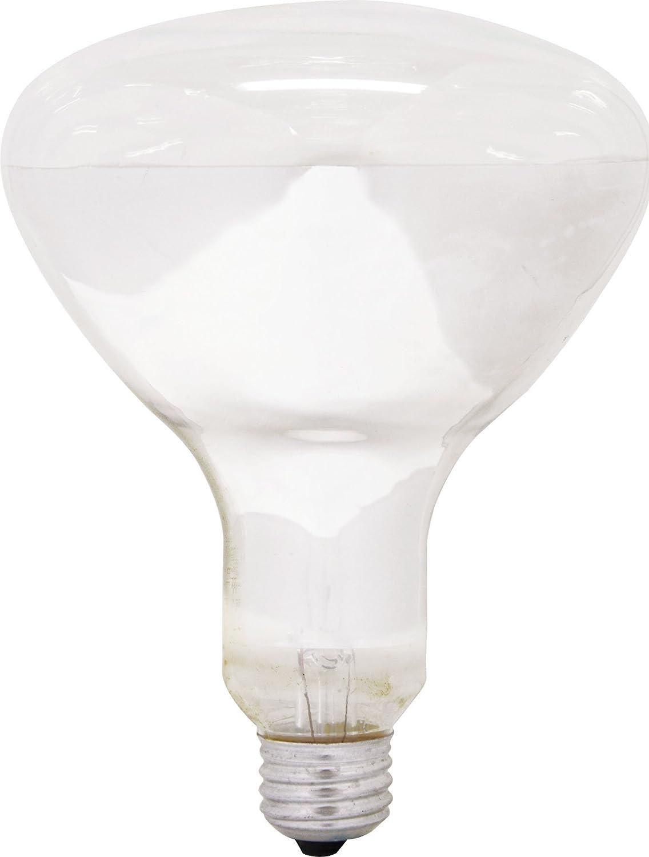 GE Lighting 14016 65-Watt 580-Lumen BR40 Soft White Flood Light Bulb, 1-Pack