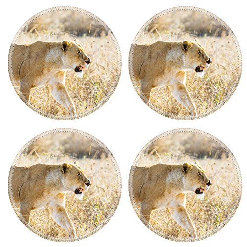 Liili Round Coasters Non-Slip Natural Rubber Desk Pads IMAGE ID: 24709525 Close up of lioness with a nose injury in Serengeti Photo from Tanzania Africa ()