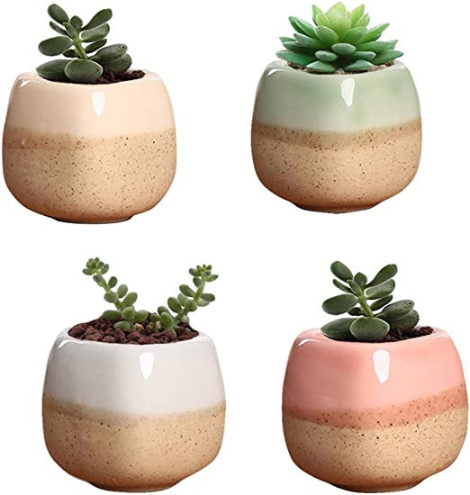 novmay Pack de 4 pcs – cerámica carnosas maceta macetas maceta ...