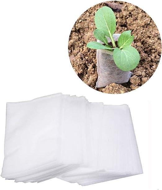 Amerisky - Bolsa de Semillas Biodegradable, no Tejida, Bolsa de ...