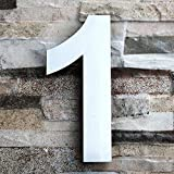 QT Modern House Number - LARGE 8 Inch - Brushed Stainless Steel (Number 1 One), Floating Appearance, Easy to install and made of solid 304