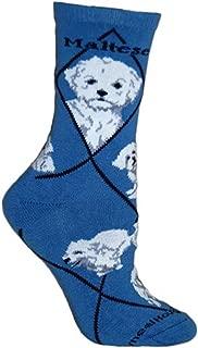 product image for Maltese Puppy Dog Animal Socks On Blue 9-11